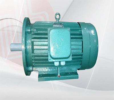 động cơ điện mặt bích 2