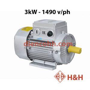 Động cơ điện Toàn Phát 3 Kw